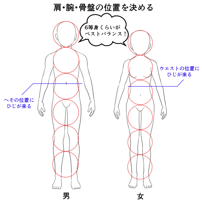 体の描き方